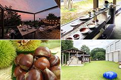 日本三名園のひとつ偕楽園のある水戸から、関東で最も古い焼き物の産地として知られる笠間まで、美術館巡りとともに満喫【後編】