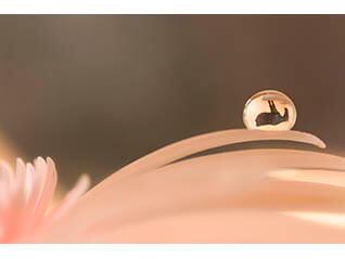 神田日勝×浅井美紀しずく写真「しずくの中の神田日勝」