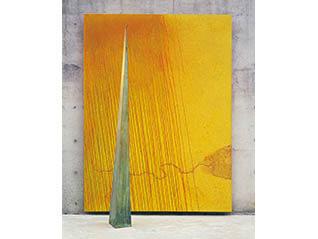 田中信太郎展「風景は垂直にやってくる」