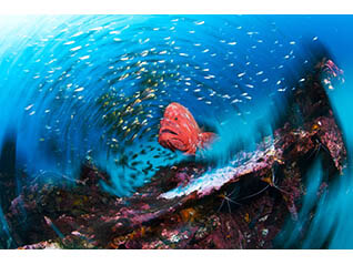 フジフイルム スクエア 企画写真展 『海から見たニッポン』