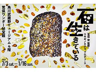 荒俣ワンダー秘宝館 特集展示「石は生きている」