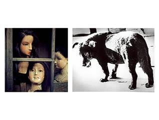 フジフイルム スクエア 写真歴史博物館 企画写真展 フジフイルム・フォトコレクション特別展「師弟、それぞれの写真表現」