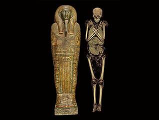 特別展 大英博物館ミイラ展 古代エジプト6つの物語