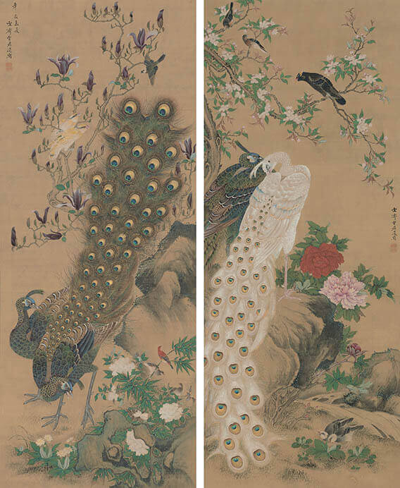 増山雪斎 《孔雀図》 江戸時代、享和元年(1801)Museum of Fine Arts, Boston, Fenollosa-Weld Collection