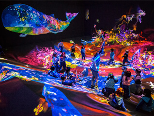 Learn&Play! teamLab Future Park ‐チームラボ 学ぶ!未来の遊園地‐