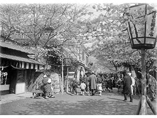 エントランス展示「郷愁の春~井田家所蔵古写真から~」