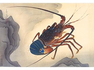 連作の小宇宙 ピカソの肖像画から大日本魚類画集まで