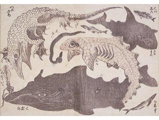 浦上コレクション 北斎漫画:驚異の眼、驚異の筆