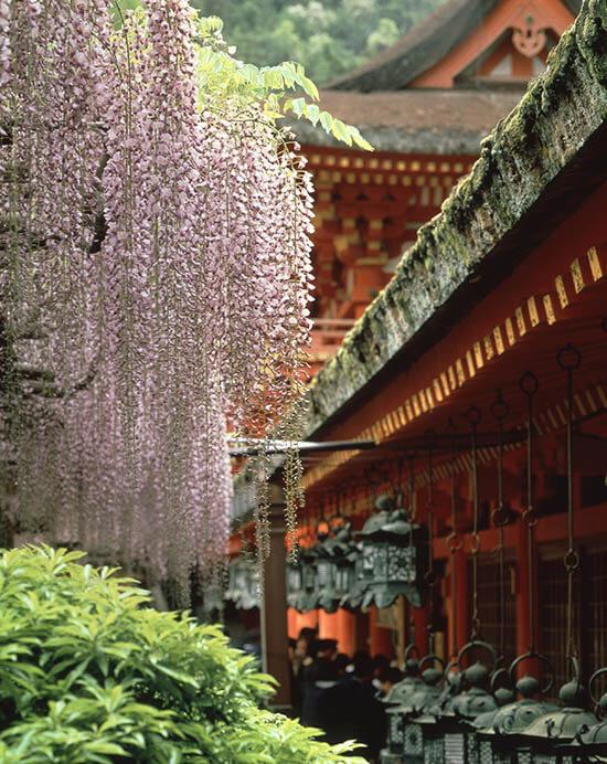 東大寺 世界 遺産