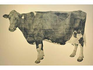 牛の足音―冨田美穂 牛の木版画展―
