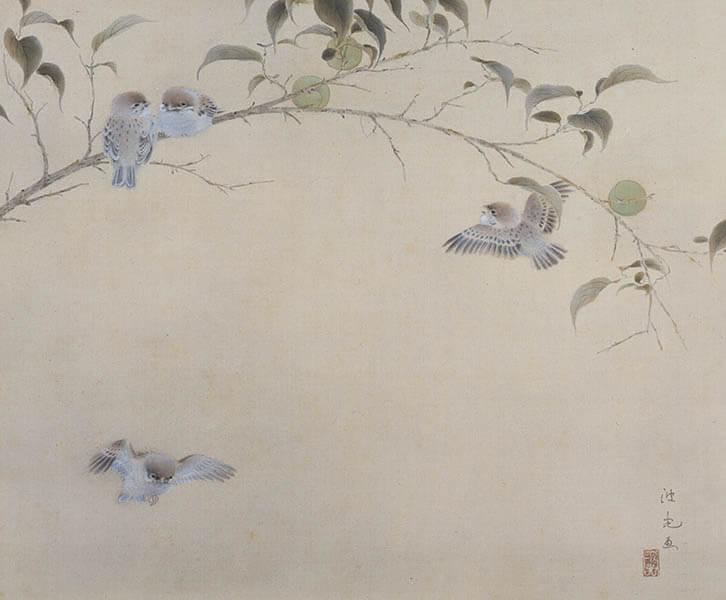 いろトリどり - 描かれた鳥たち 嵯峨嵐山文華館-4