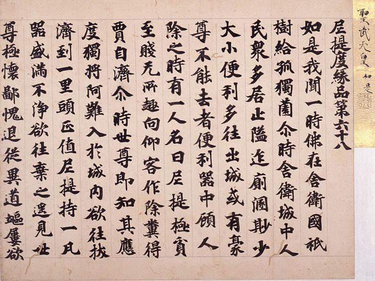 国宝 雪松図と明治天皇への献茶 三井記念美術館-10