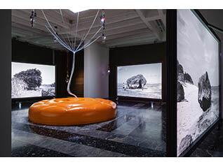 第58回ヴェネチア・ビエンナーレ国際美術展日本館展示帰国展 Cosmo-Eggs  宇宙の卵