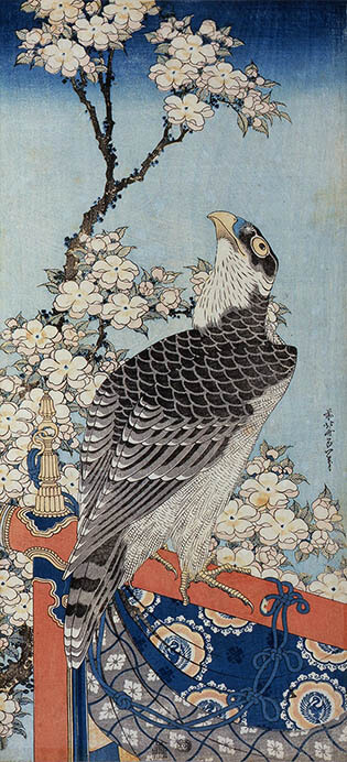 THE北斎 ―冨嶽三十六景と幻の絵巻― すみだ北斎美術館-5