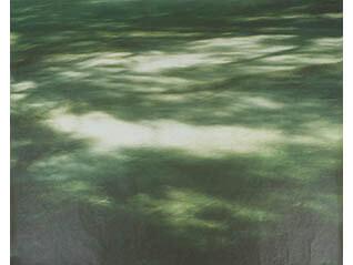 秋岡美帆―風の景―