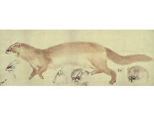 江戸の画家たち 第一部 円山派と文人画家