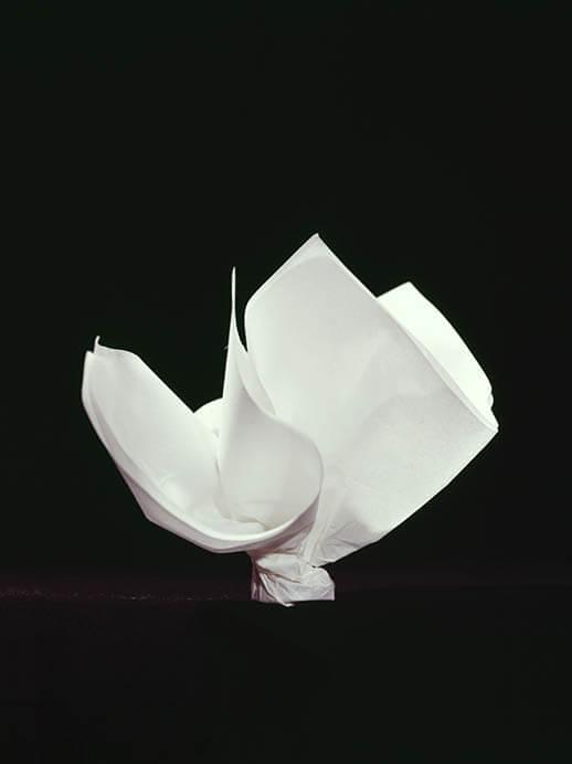 包む-日本の伝統パッケージ 目黒区美術館-5