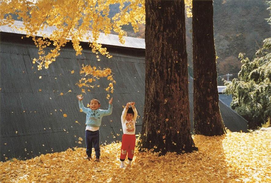 Walls & Bridges 世界にふれる、世界を生きる 東京都美術館-1