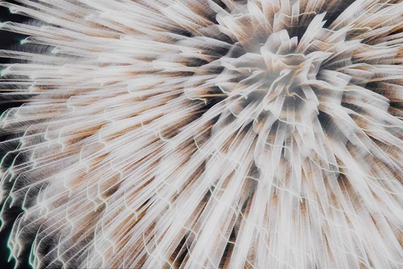 MOTコレクション Journals 日々、記す 特別展示:マーク・マンダース「保管と展示」 東京都現代美術館-7