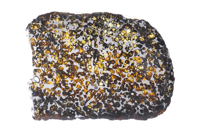 荒俣ワンダー秘宝館 特集展示「石は生きている」 角川武蔵野ミュージアム-4