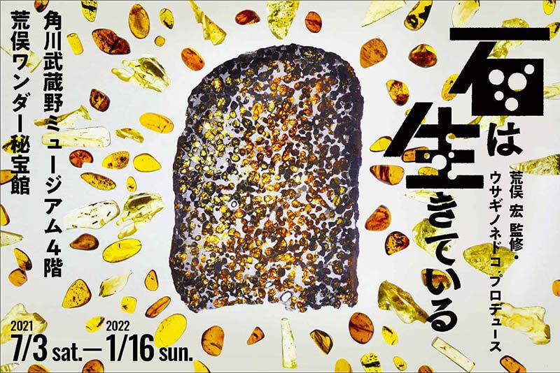 荒俣ワンダー秘宝館 特集展示「石は生きている」 角川武蔵野ミュージアム-1