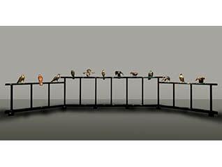 国立工芸館石川移転開館1周年記念展 《十二の鷹》と明治の工芸