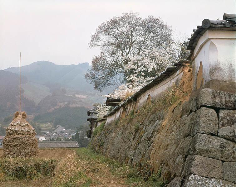 入江泰吉「聖徳太子ゆかりの地」展 入江泰吉記念奈良市写真美術館-3