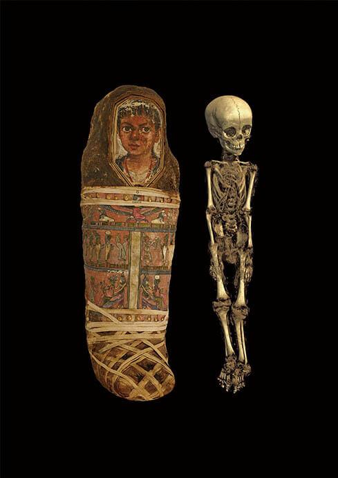 特別展「大英博物館ミイラ展 古代エジプト6つの物語」 国立科学博物館-9