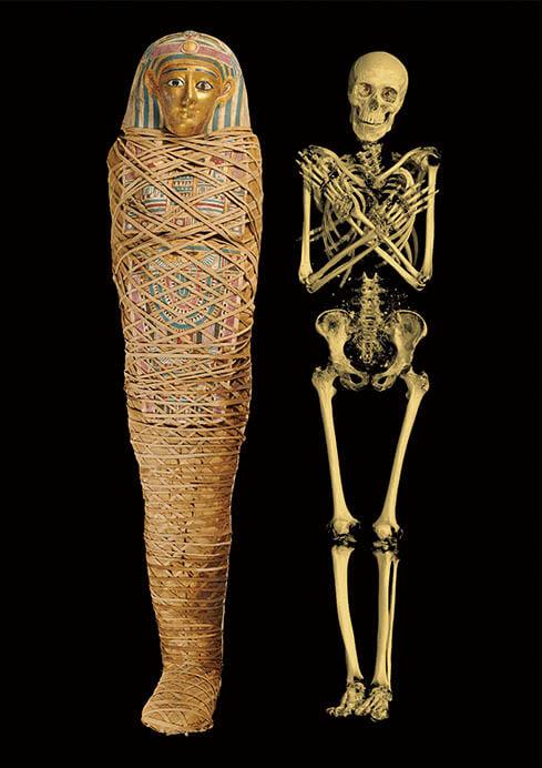 特別展「大英博物館ミイラ展 古代エジプト6つの物語」 国立科学博物館-11