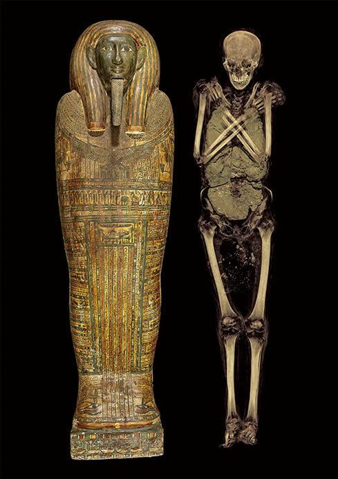 特別展「大英博物館ミイラ展 古代エジプト6つの物語」 国立科学博物館-1