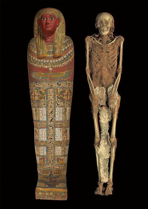 特別展「大英博物館ミイラ展 古代エジプト6つの物語」 国立科学博物館-5