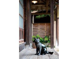 企画展「夢二生家の秋」/特別展示「加藤 萌 漆芸展-夢二を見ていた猫たち-」