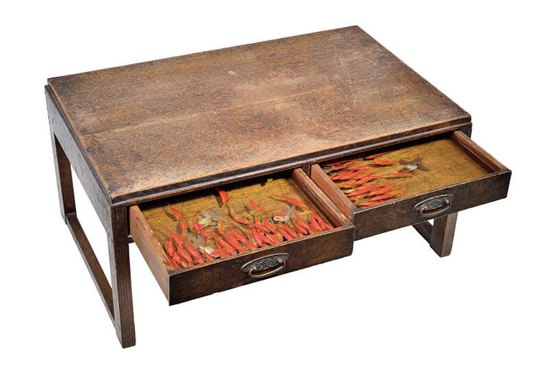 深堀隆介展「金魚鉢、地球鉢。」 上野の森美術館-2